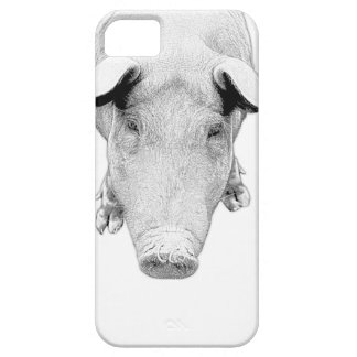 The Hog in Black and White iPhone 5 Cases