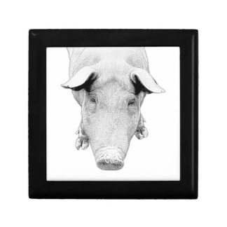 The Hog in Black and White Gift Box