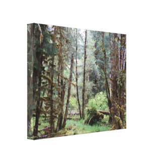 The Hoh Rainforest, WA, Wrapped Canvas