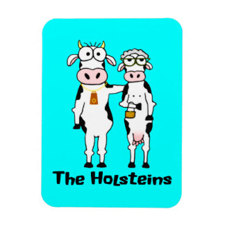 The Holsteins Vinyl Magnets