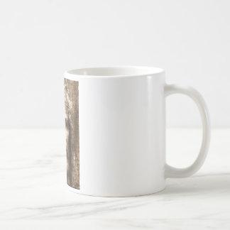 THE HOLY FACE OF JESUS COFFEE MUG