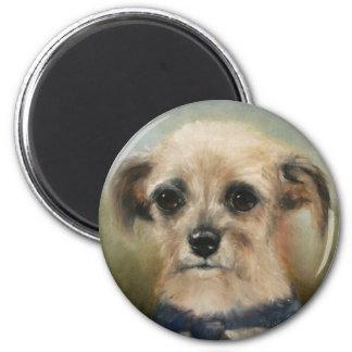 The Homeless Terrier Magnet