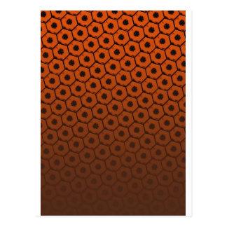 The Honeycomb Postcard