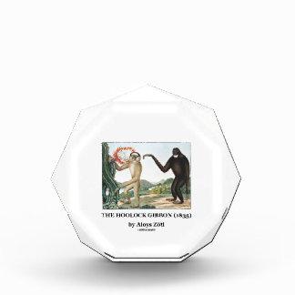 The Hoolock Gibbon (1835) by Aloys Zotl Awards