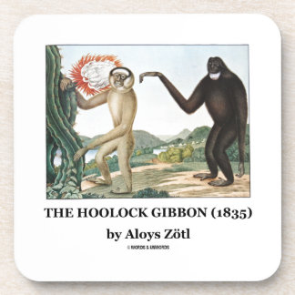 The Hoolock Gibbon (1835) by Aloys Zotl Beverage Coaster