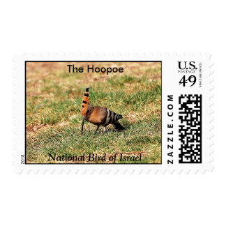 The Hoopoe, National Bird of Israel postage stamp