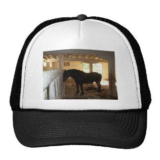 The Horse Barn Trucker Hat