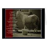 The Horse Card