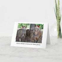 The Horse Family Photo Christmas Card