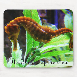 The Horse of the Sea Mouse Pad