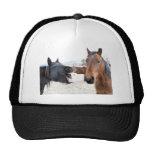 The Horse Pesterer Mesh Hat