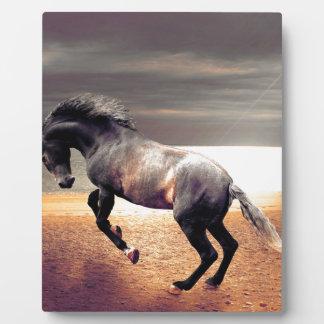 The Horse Plaque