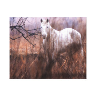 The Horse Scene canvas print