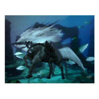 The Horse Shark 2 Postcard