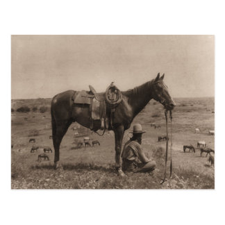 The Horse Wrangler 1910 Postcard