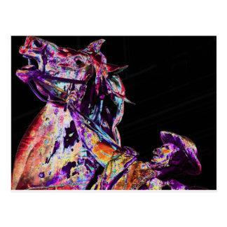 """The """"Horse Wrangler"""" (3) Postcard"""