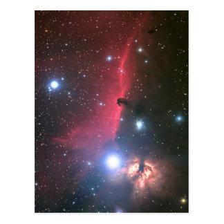 The Horsehead Nebula Postcard