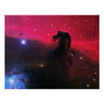 The Horsehead Nebula Posters
