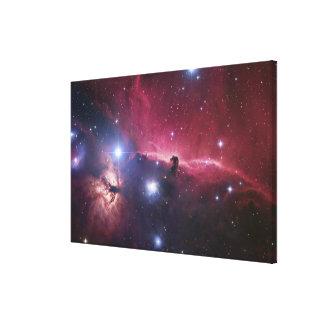 The Horsehead Nebula region (Barnard33) Canvas Print