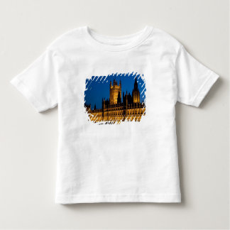 The Houses of Parliament at night in the city of Tshirts