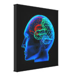 The Human Brain  Stretched Canvas Print