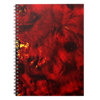 The Human Extinction Notebook