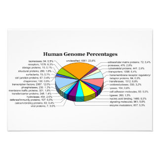 The Human Genome with Number and Percent of Each Announcement