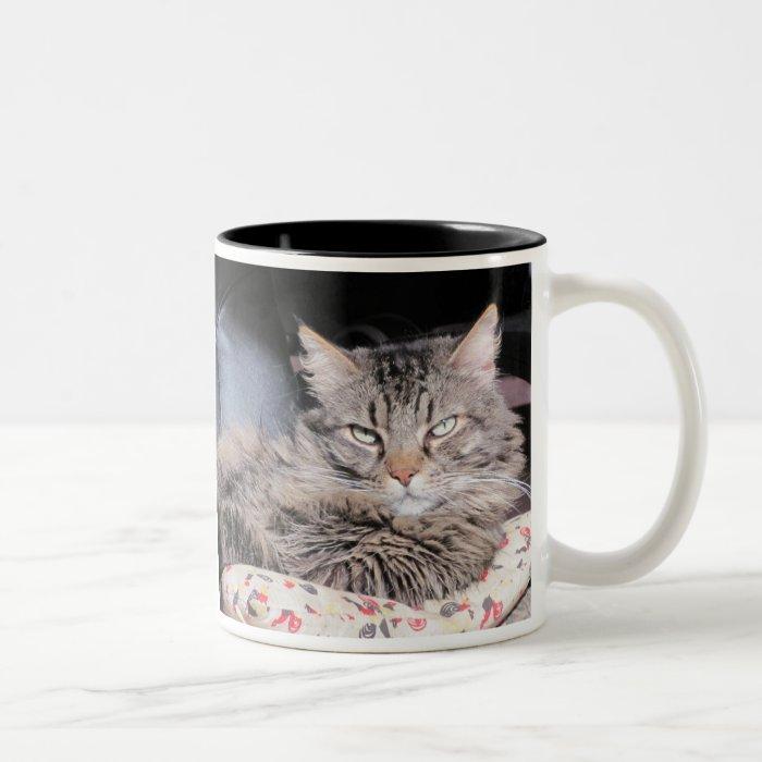 The Human Race Should Know Better Two-Tone Coffee Mug