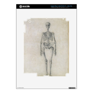 The Human Skeleton, anterior view, from the series Decals For iPad 3