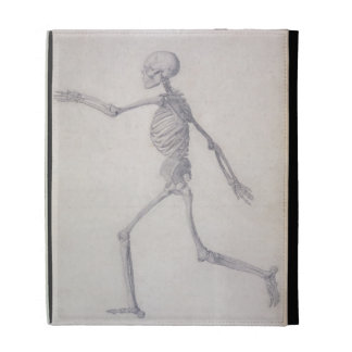 The Human Skeleton, lateral view, from the series iPad Cases