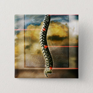 The human spine pinback button