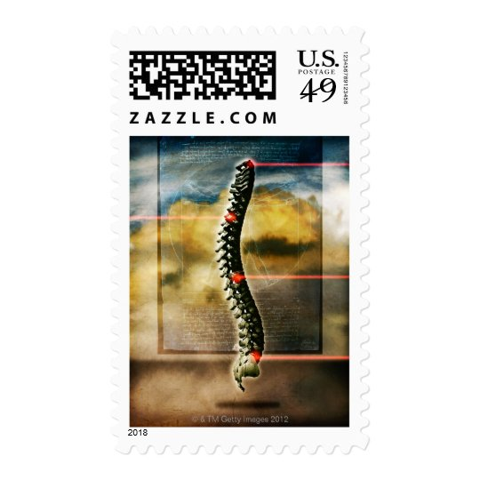 The human spine postage