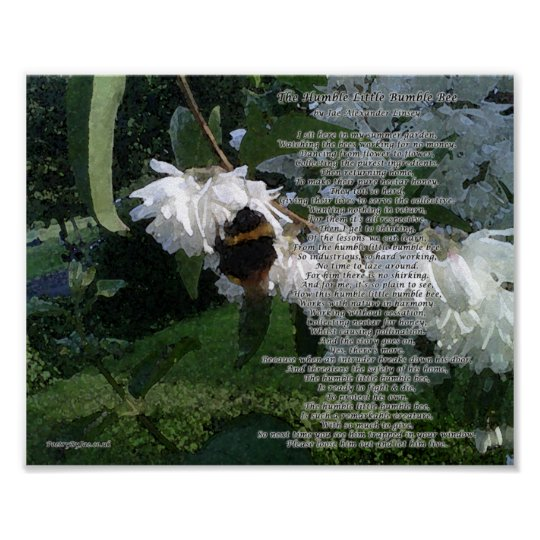 The Humble Little Bumble Bee 10inch x 8inch.png Poster