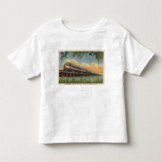 The Humming Bird Railroad Train Toddler T-shirt