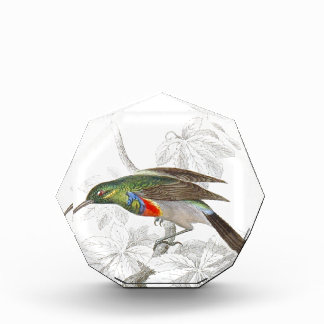 The Hummingbird Award