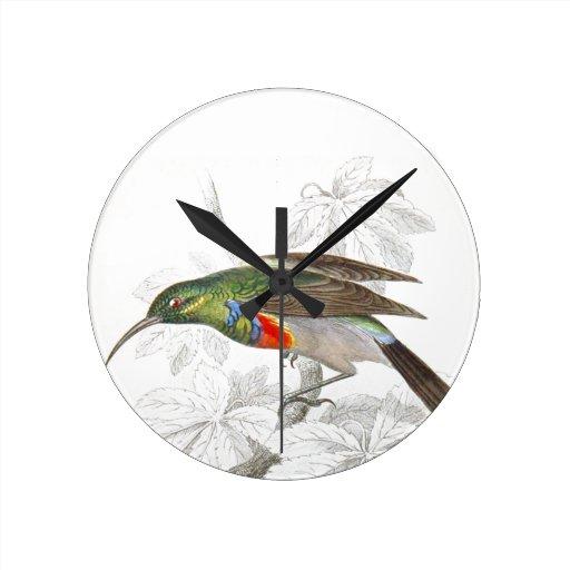 The Hummingbird Round Wall Clocks