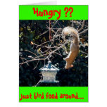 The hungry squirrel card