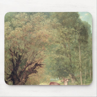 The Hunted Roe-Deer on the alert, Spring, 1867 Mouse Pad
