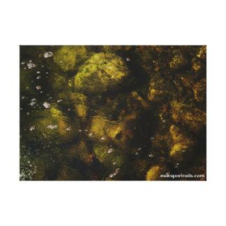 The Huron River Bottom Canvas Print