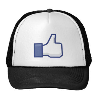 THE 'I LIKE HAND' PICTURE TRUCKER HAT