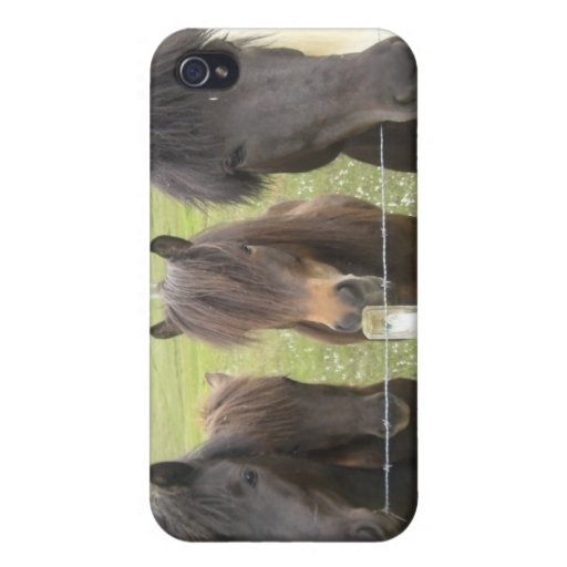 The Iceland horse iPhone 4 Cases
