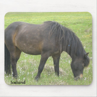 The Iceland horse Mouse Pad