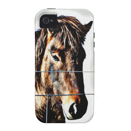 The Icelandic Horse - A Real Friend iPhone 4/4S Cases