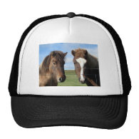 The Icelandic Horse - A Real Friend Hat