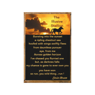 The Illusive Stallion Canvas Print