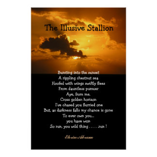 The Illusive Stallion Poster