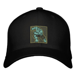 The incredible embroidered hat