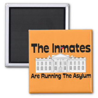 The Inmates Are Running The Asylum Magnet