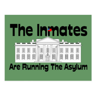 The Inmates Are Running The Asylum Postcard