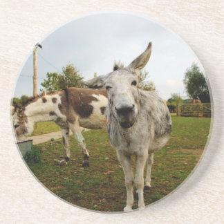 The inquisitive Donkey Sandstone Coaster